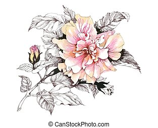 Hand drawn watercolor pink flower isolated on white background.