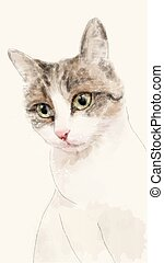 hand drawn watercolor sketch of the cat