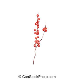 Hand drawn watercolor winter berries and branch isolated on white background.