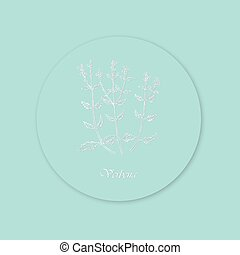 Hand Drawn White Bush of Verbena Placed on the Round Substrate with Shadow. Curved Effect Made with White Color and Grey Shadowing. Same Delicate Blue Background and Substrate Color.