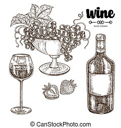 Hand drawn wine bottle with grapes and wineglass. Vector illustration vintage. Alcohol drink set in sketch style.