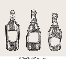 Hand drawn wine bottles in sketch style. Vector illustration vintage.