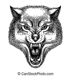 Hand Drawn Wolf Head in sketch style. Wolf with open mouth vector illustration isolated on white.