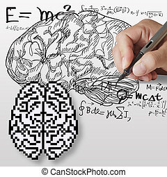 hand draws maths, science formula and brain sign