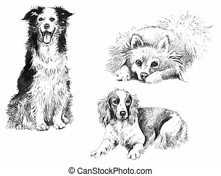 Set of black and white ink hand drawn dogs