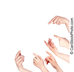 Hand finger pointing isolated