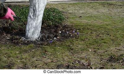hand garden hose water