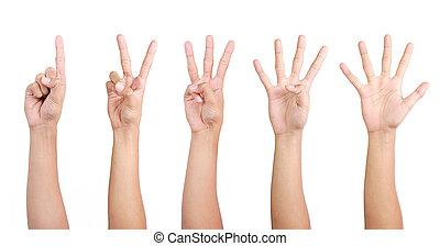 hand, gebaren, telling, van, 1, om te, 5