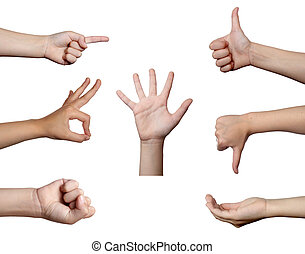 hand gesture body language - collection of hands gesturing,...