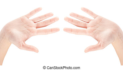 hand gestures isolated on a white