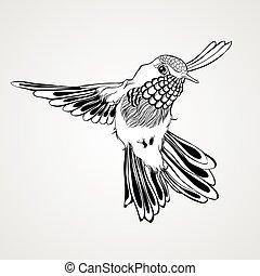 hand, getrokken, vliegen, het zoemen, vogel
