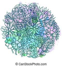 hand, getrokken, watercolor, succulent, bouquet.