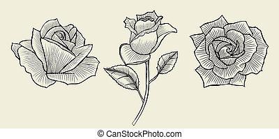 rosen hand drawn bleistift bleistift rosen hintergrund stock illustration suche. Black Bedroom Furniture Sets. Home Design Ideas