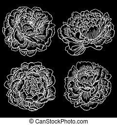 vektor d hand busch schwarz retro hintergrund vektor illustration suche clipart. Black Bedroom Furniture Sets. Home Design Ideas