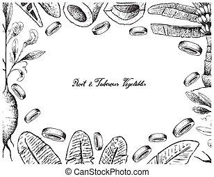 hand, gezeichnet, rahmen, von, wurzel, und, tuberous, gemuese
