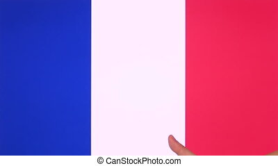 Hand giving thumb up with France flag, approval gesture with copy space