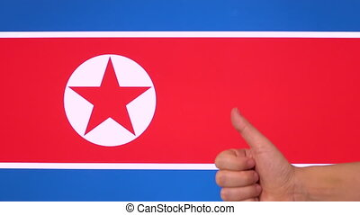 Hand giving thumb up with North Korea flag, approval gesture with copy space