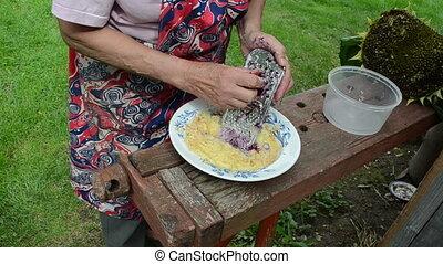 hand grater potato - senior woman shredder potato with steel...
