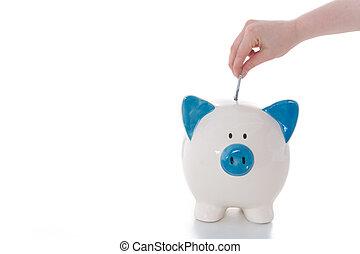 hand, het putten, geld, in, piggy bank