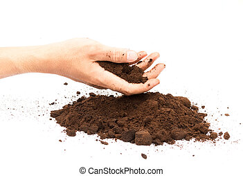 Hand hold coffee ground on white background, skin care and beauty concept