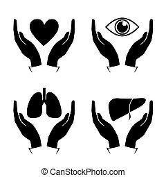 Hand hold heart, eye, lung, liver icons