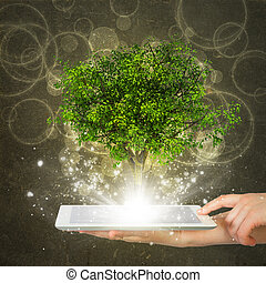 Hand hold tablet pc with magical green tree