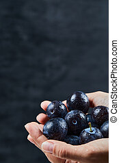Hand holding a bunch of plums on a dark background