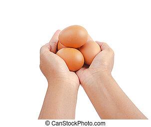 Hand holding a heap of raw chicken egg.
