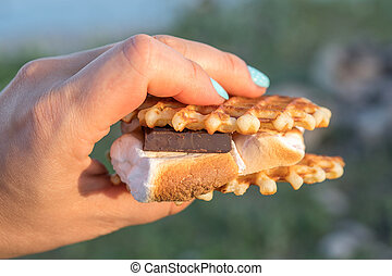 Hand holding a hot smore. Sweet dessert made from cookies, chocolate and marshmallow