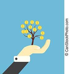 Hand Holding a Money Tree
