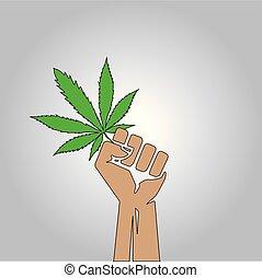 hand holding a sheet of marijuana