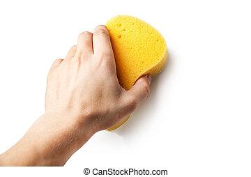 Hand holding a sponge isolated on white background.