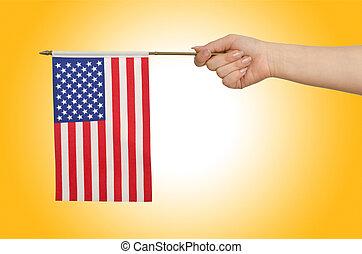 Hand holding american flag on white