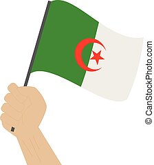 Hand holding and raising the national flag of Algeria