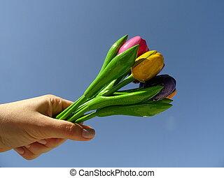 hand holding, auf, a, blumengebinde, von, bunte, hölzern, tulpen, agaist, der, hintergrund, von, der, blauer himmel