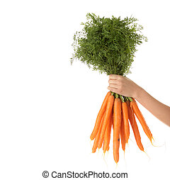 Hand holding bunch of orange carrots