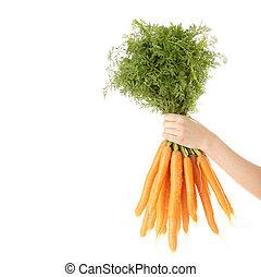 Hand holding bunch of orange carrots