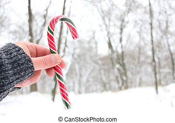 Hand holding Candy Cane. Snowy Christmas landscape.