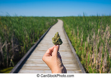 Hand holding cannabis bud agains trail and blue sky landscape - medical marijuana concept