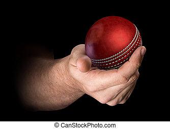 Hand Holding Cricket Ball