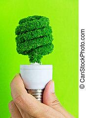 hand holding eco light bulb energy
