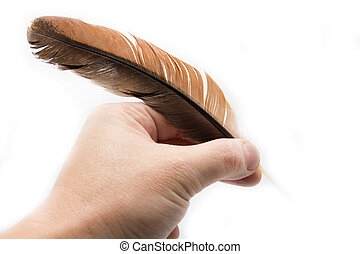 Hand holding feather
