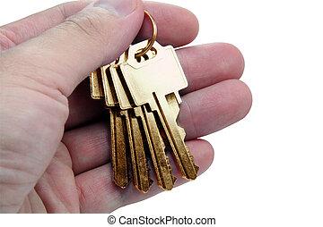 hand holding golden