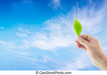 Hand holding green leaf on sky background with environment concept.