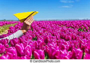 Hand holding paper plane and purple tulips view