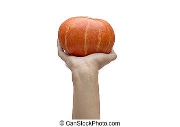 Hand holding pumpkin