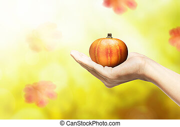 Hand holding pumpkin with autumn leaves