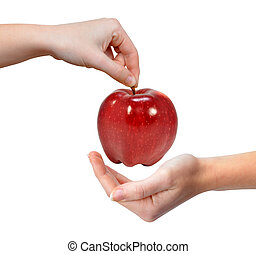 Hand holding red apple