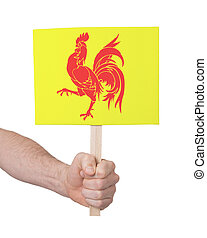 Hand holding small card - Flag of Wallonia