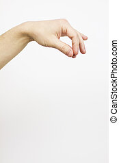hand holding something blank isolated on a white background - copy space
